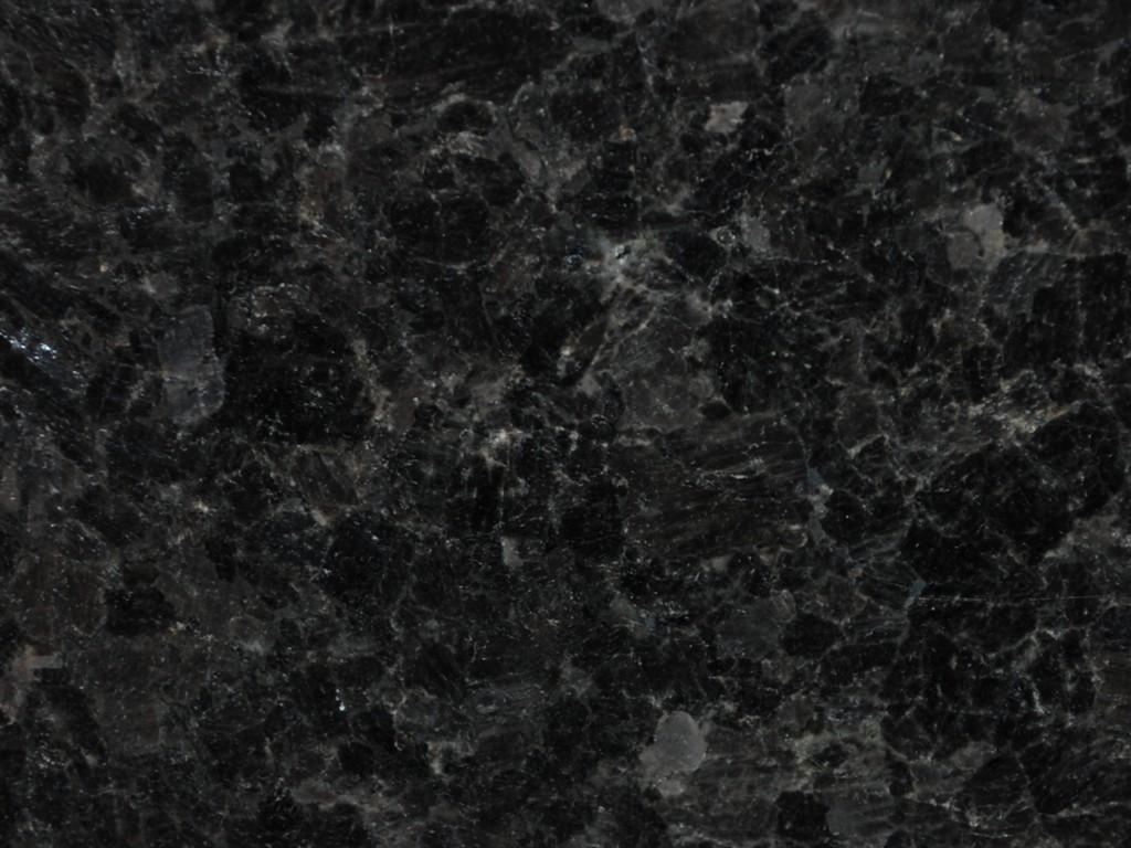 Black Antique Labrador Supreme